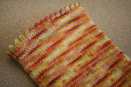 fannie sock progress