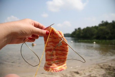 fannie sock on the beach