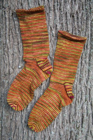 june carter socks with a tree