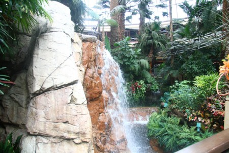 web_Lobby Waterfall