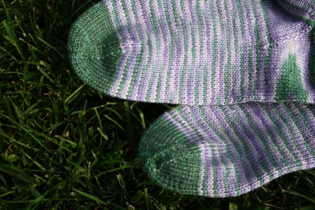 Lilac Sock Toes blog size