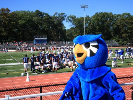 Owl at Football Game blog size