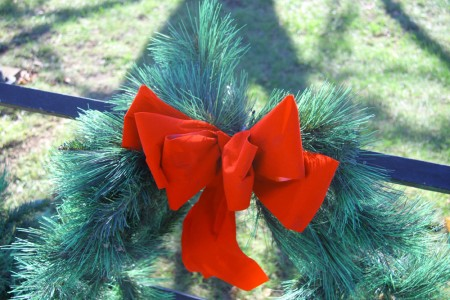 Red Velvet Bow blog size
