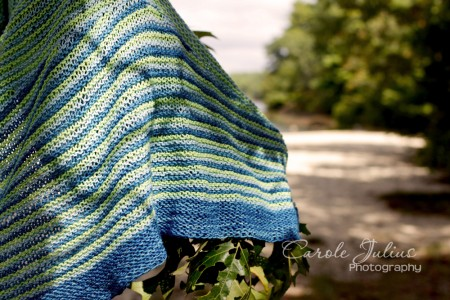 color affection with edge for carole knits