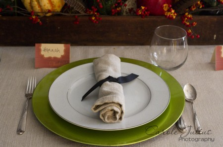 thankgiving place setting for carole knits