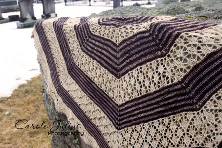germinate shawl 3 for carole knits