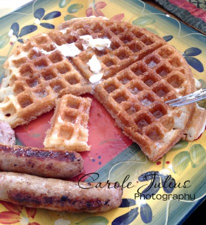 waffles for carole knits