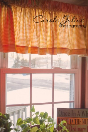 kitchen window for carole knits