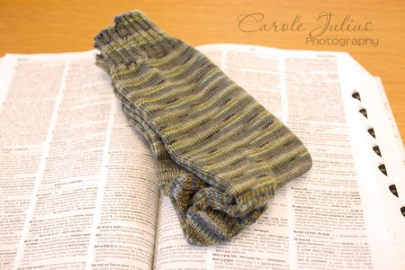 dale socks 2014 no 1 for carole knits