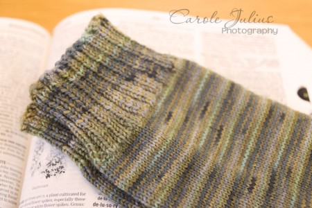 dale socks 2014 no 3 for carole knits