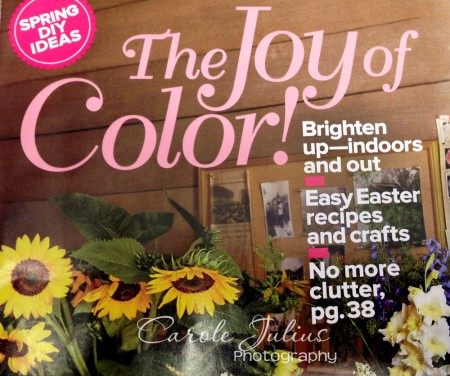 joy of color for carole knits