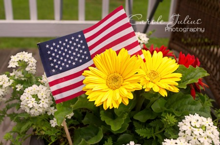 memorial day flowers for carole knits