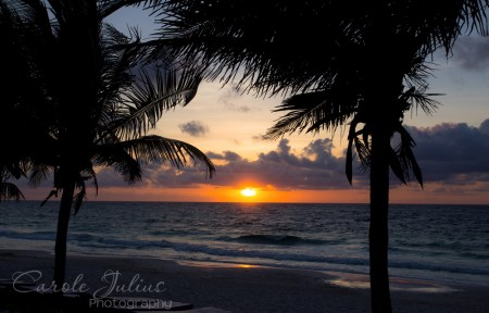 sunrise in tulum with palm trees for carole knits