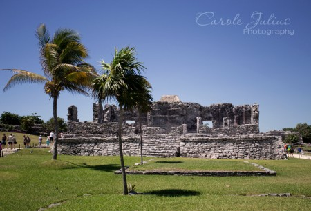 tulum ruins for carole knits