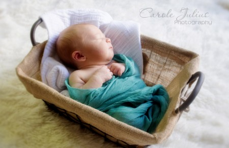 landon in basket for carole knits