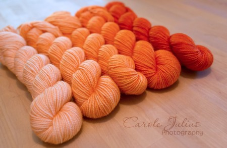 mystery shawl skeins persimmon for carole knits
