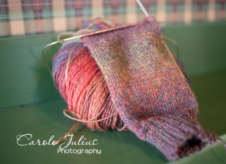 painted desert sock for carole knits
