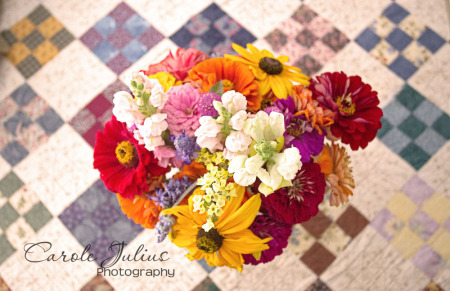 backyard bouquet for carole knits