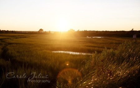 marsh sunset for carole knits