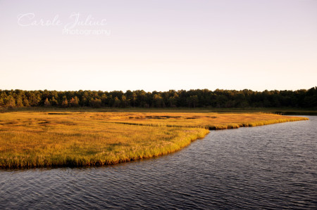 waquoit marsh golden hour for carole knits