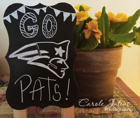 go pats for carole knits