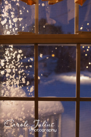 snowy window for carole knits