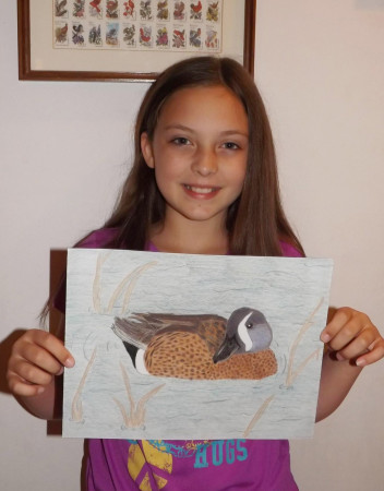 ambrynn duck stamp entry