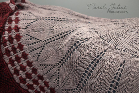 cactus flower shawl body for carole knits