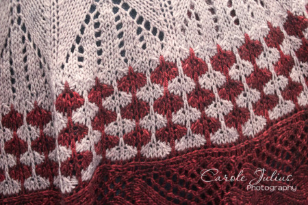 cactus flower shawl border for carole knits