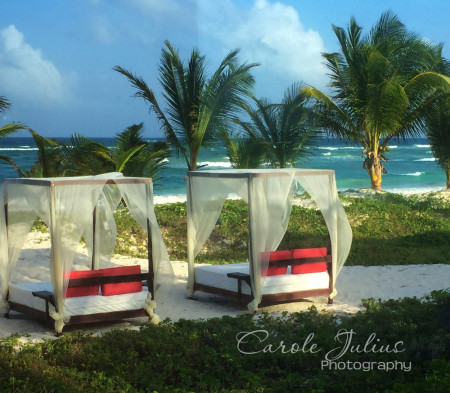 los lirios beach beds for carole knits