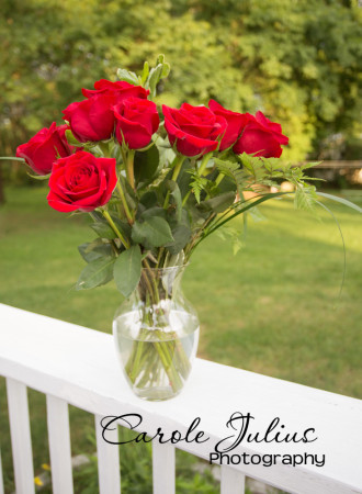 anniversary roses 2015 for carole knits