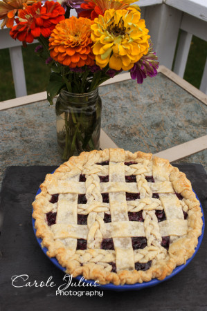 blueberry pie for carole knits