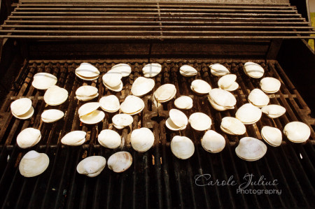clams on the grill for carole knits