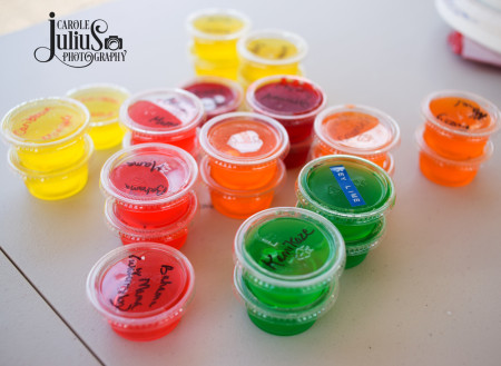 best jello shots ever for carole knits