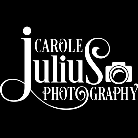 cjp logo for carole knits