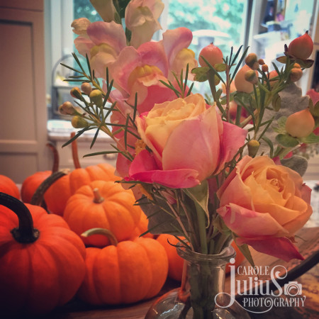wedding flowers and pumpkins for carole knits