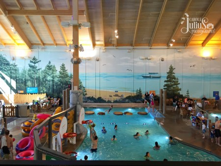 great wolf lodge pool for carole knits