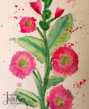 hollyhocks watercolor for carole knits