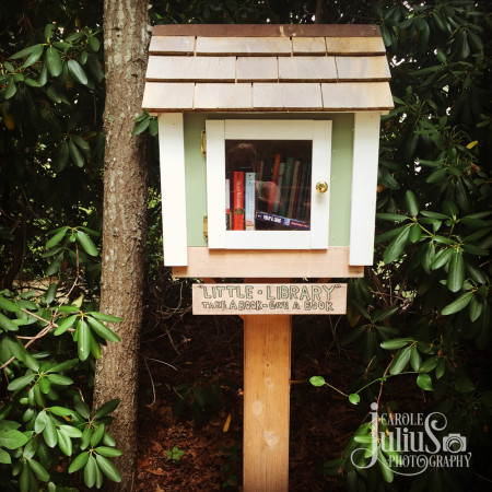 little library for carole knits