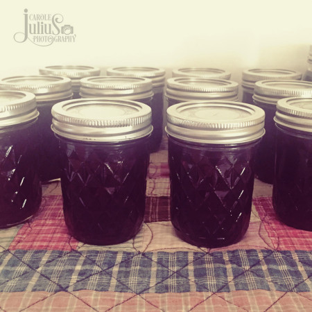 grape-jam-for-carole-knits