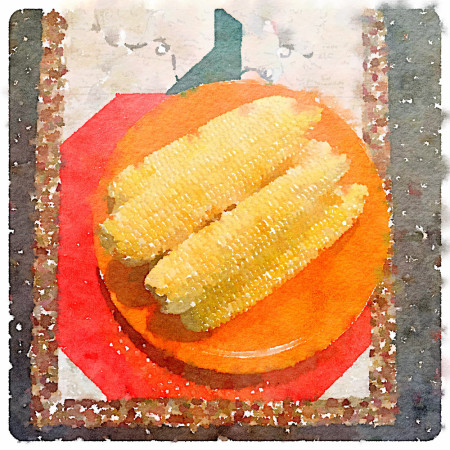 local-corn-watercolor-for-carole-knits