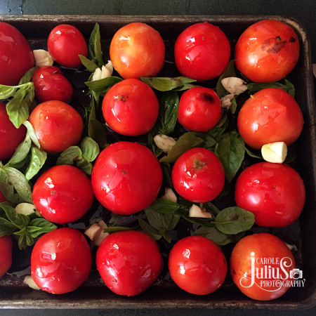 roasted-tomatoes-for-carole-knits