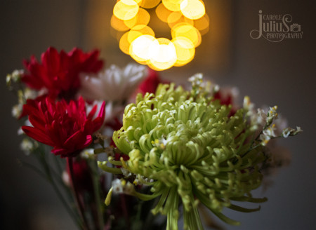 flowers-with-bokeh-lights-for-carole-knits