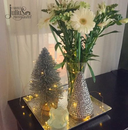winter-decorations-for-carole-knits
