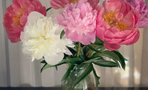 peony-bouquet-for-carole-knits