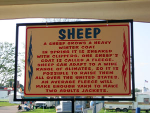 sheep_sign.jpg