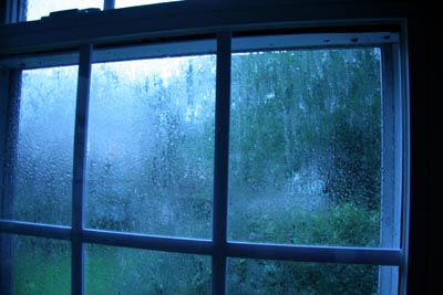 rainy_window.jpg